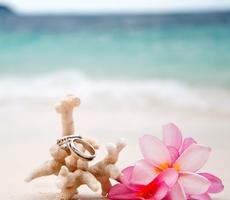 Свадьбы по годам — что дарить «молодоженам» по случаю?