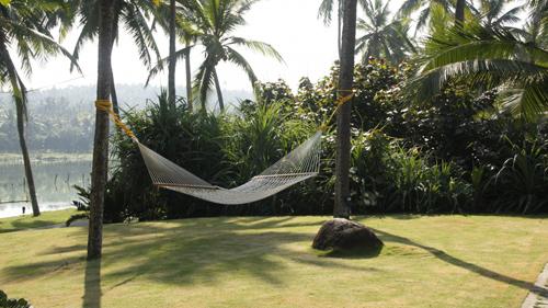 отдых и путешествие в джунглях
