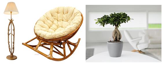креслокачалка, торшер и домашнее дерево